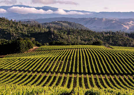 Amazing Wine Country Destinations