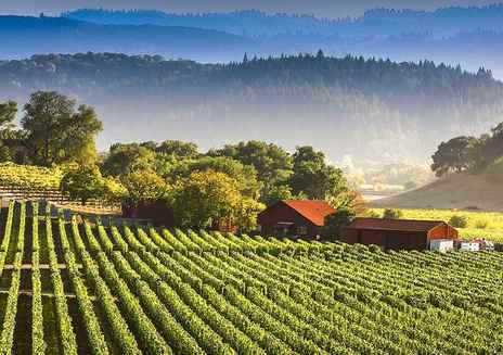 Routes des vins de Californie