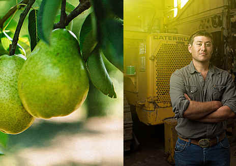 People, Passion and Pears. This is how California Grows.