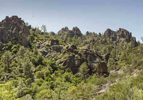 Spotlight: Pinnacles National Park