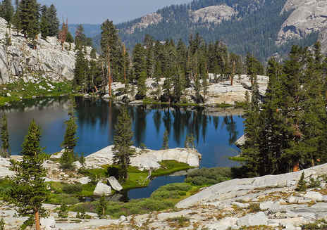 Spotlight: Sequoia & Kings Canyon National Parks