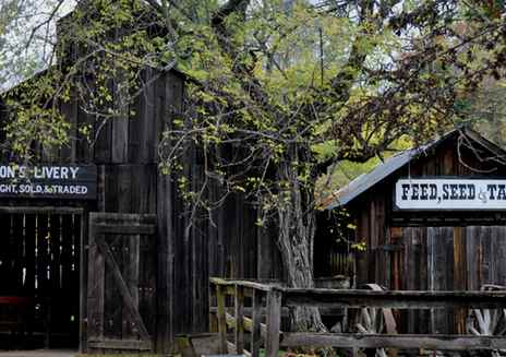9 Family-Friendly Gold Rush Adventures