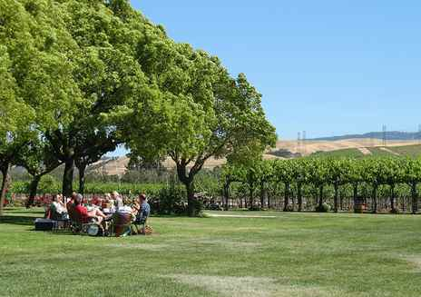 Tesla Road - Livermore Wine Country