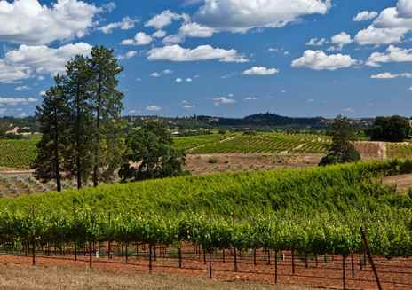 Sip Wine in the Gold Country