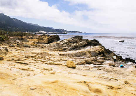 Point Lobos: Riserva naturale