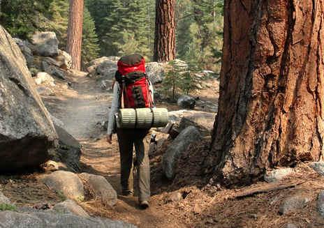 Hospedagem e Acampamento em Sequoia e Kings Canyon