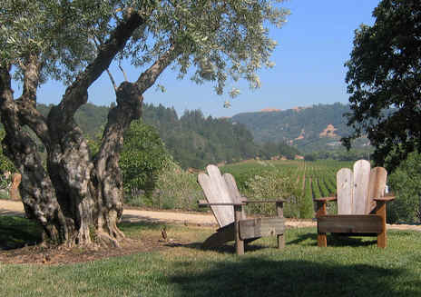 Bella Vineyards y Wine Caves