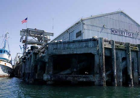 Monterey Wharf II