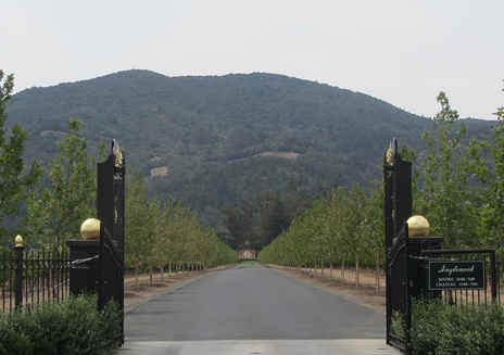 Inglenook Winery