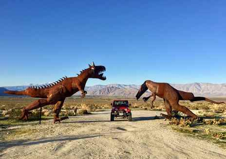 Amazing Desert Oddities