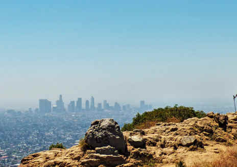 Focus: Griffith Park