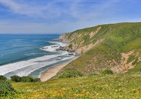Spotlight: Point Reyes National Seashore