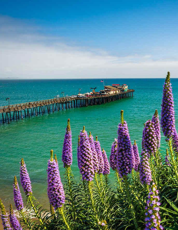 8 Cool California Piers