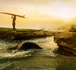 L'attraction The Walking Dead Surfing_Mom_LaJolla_Myles_1280x642