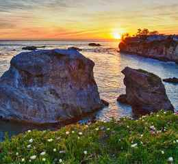 How to See California's 2019 Super Bloom  VC_CentralCoast_RegionHero_DinosaurCavePark-ShellBeach_Stock_RF_143997001_1280x640x_0
