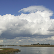 Bolsa Chica State Ecological Reserve