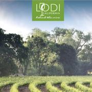 Visit Lodi