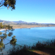 Cayucos Chamber – visitor information