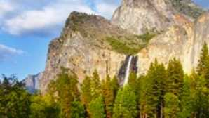 Spotlight: Yosemite National Park  vca_resource_yosemitetravellodging_256x180
