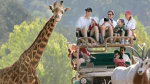 Smaller Theme Parks & Attractions African Safaris & Pricing - Safa_0