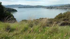 5 Best Walks near San Francisco Angel Island SP