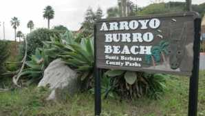 アロヨブロ・ビーチ Arroyo Burro Beach Park