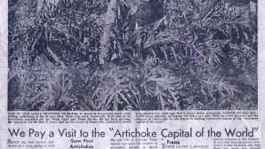 カストロビル・アーティチョーク・フード&ワイン・フェスティバル Artichokes & Castroville | Castr