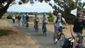 Nightlife in California CA Wine Country Bicycle Tour alt