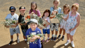 CA Agricultural Educational Experience