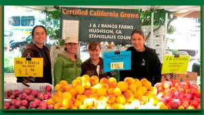 Amazing Agritourism Experiences California Certified Farmers' Ma