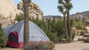 ロストホース金鉱跡 Campgrounds - Joshua Tree Nation