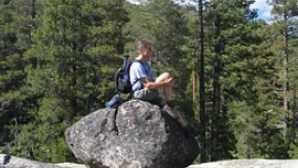 시에라의 만개한 야생화 Caples Creek Trail