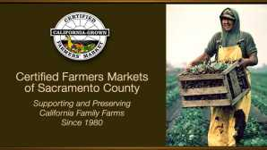 Beer-muda Triangle & Other Yolo County Foodie Finds  Certified Farmers' Market - Cali