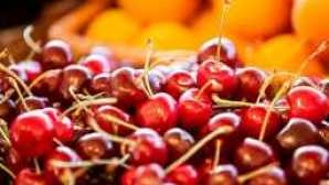Spotlight: Sonoma County Cherry