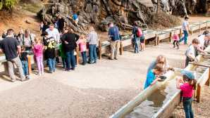 9 Family-Friendly Gold Rush Adventures  Columbia, California | Historic