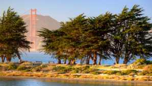 12 Great Urban Parks  Crissy Field