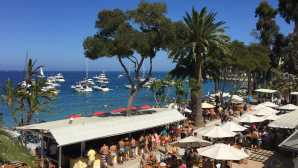 Catalina's Luxury Lodgings & Beach Club Descanso Beach Club | Catalina I_0