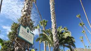 Spotlight: Santa Catalina Island  Events - Catalina Island