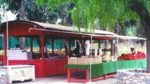 The Vegetable Shop alla fattoria della famiglia Chino  Farm Stands :: San Diego County