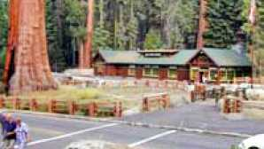 Kings Canyon Scenic Byway Giant Forest Museum - Sequoia &