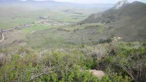 Wildlife Watching in San Luis Obispo County Hike up Black Hill trail in Morr