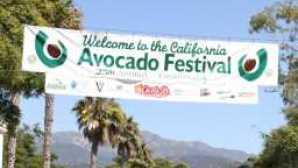 California Avocado Festival IMG_260120120514-26067-v59fgs-0_960x