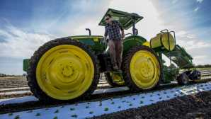Meet a Farmer: Chris Hay of Say