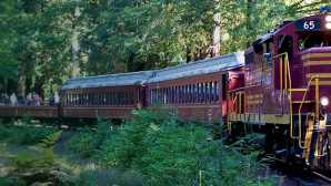 Skunk Train Mendocino County's Historic Skun