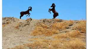 Borrego Springs  Metal Sculptures of Borrego Spri