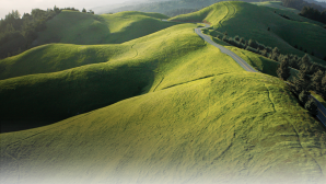 California's Classic Wine Roads North Coast | California Wines_1