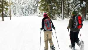 Guided Adventures in California Parks Northern California Snowshoeing
