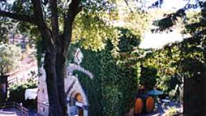 5 Amazing Things to Do in Palo Alto Paul Masson Mountain Winery, San