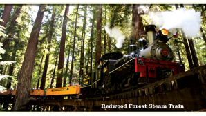 산타크루즈 고래 관찰 Roaring Camp Railroads | Felton,