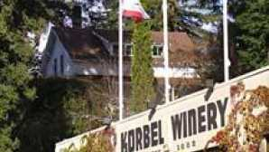 Spotlight: 소노마 카운티 Russian River Valley Wine Region